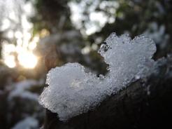 ice-bokeh